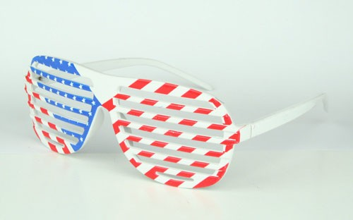 12 Fan Brillen USA Art.-Nr. 0700423001