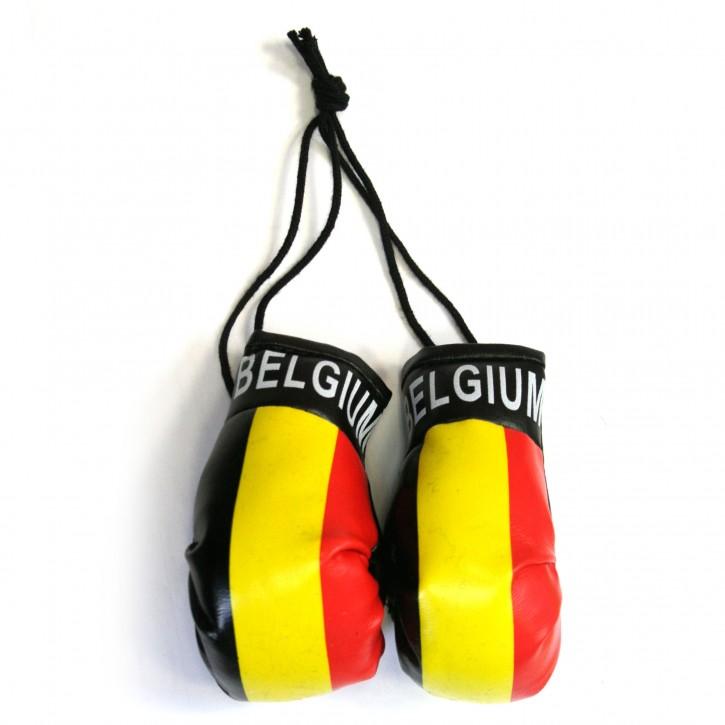 Paket mit 6 Mini Boxhandschuhe Belgien Art.-Nr. 0700160032