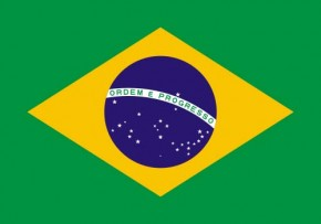 Paket mit 10 Länderflagge Brasilien Art.-Nr. 0700000055