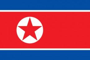 Paket mit 10 Länderflagge Nordkorea Art.-Nr. 0700000850