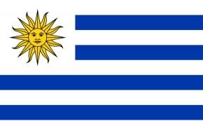 Paket mit 10 Uruguay Länderflaggen Art.-Nr. 0700000598